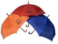 Paraguas grabado a una tinta en colores surtidos